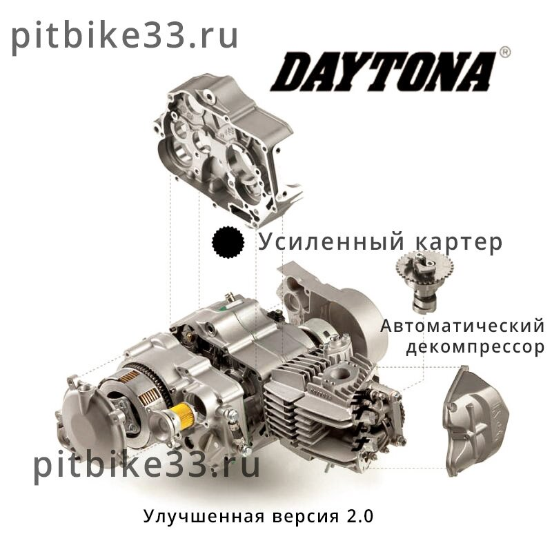 Daytona Anima